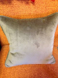 Pillow, Throw - Browns 3