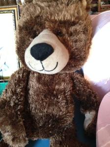 Teddy - Brown 1