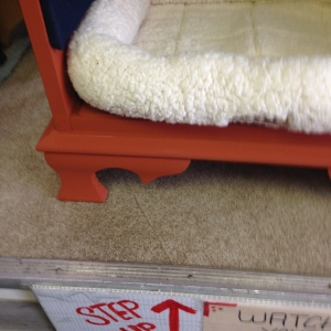 Dog Bed in Pumpkin 3