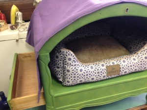 Dog Bed with Canopy 10