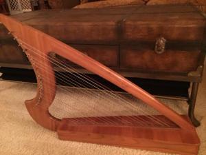 02-24-harp-2